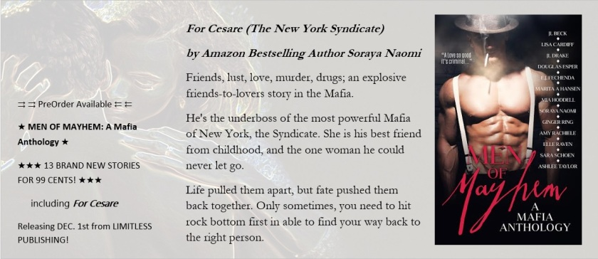 Teaser For Cesare by author Soraya Naomi Men of Mayhem